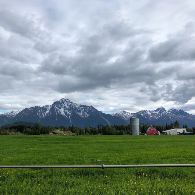 Oh Alaska, you don't disappoint. Even on days with imperfect weather and wind, you're magnificent. And I'm grateful to be here. #humansoutside365